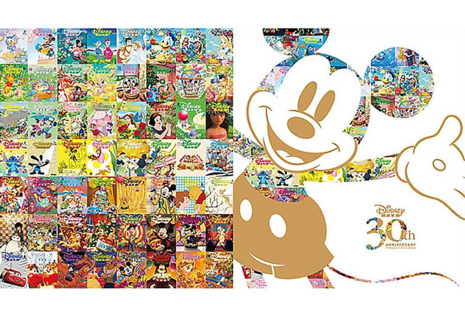 Disney_fan_1